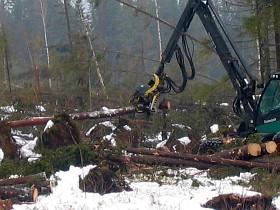 Mit dem Timberjack 1270B im Sturmholz in Schweden